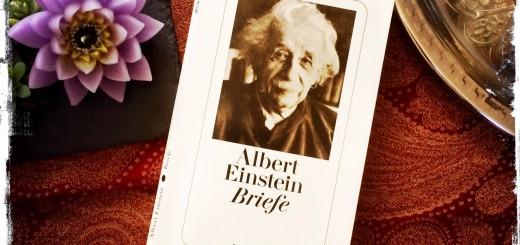 """Idealer """"Lebens-Ratgeber"""": das Buch """"Albert Einstein - Briefe"""" (Foto: balkanblogger.com)"""